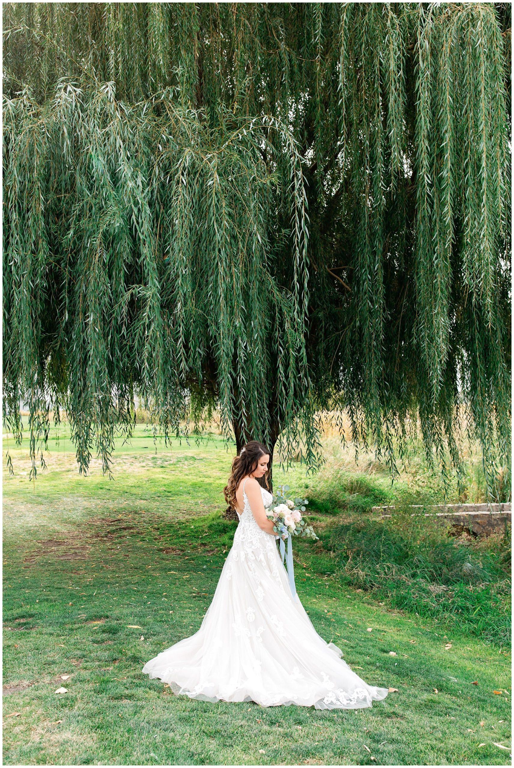 Bridal pictures under willow tree at Sleepy Ridge Wedding Venue